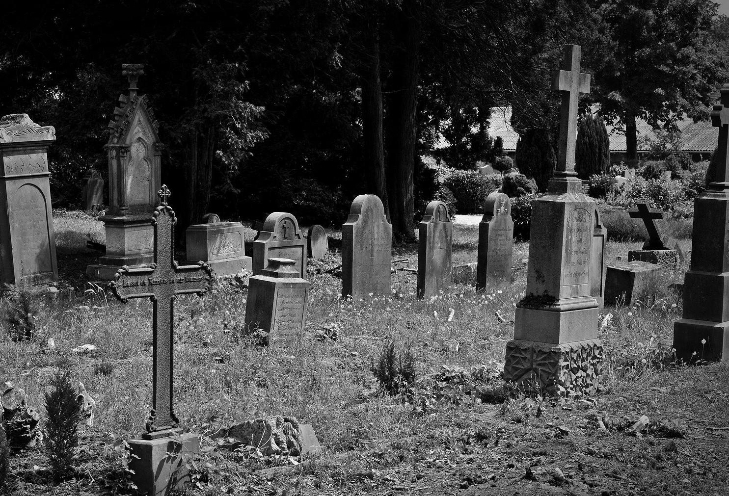 Estarían profanando tumbas en cementerio de Soledad para
