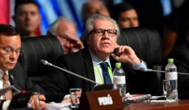 Luis Almagro, secretario general de la OEA / AFP
