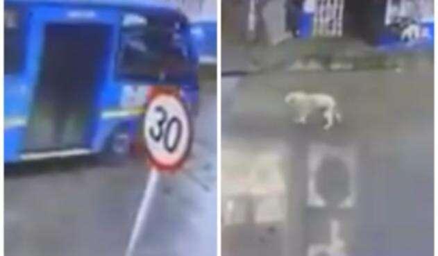 Imagen del incidente / Tomada de video difundido en redes