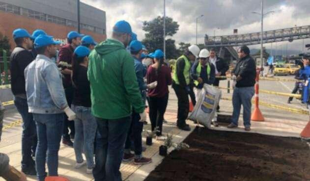 150 voluntarios pertenecientes a la Comunidad Terranum, que reúne a más de 20 empresas del sector, le dieron vida al eje de la calle 26