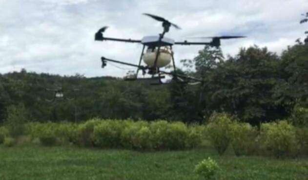 Con drones será la fumigación de cultivos ilícitos