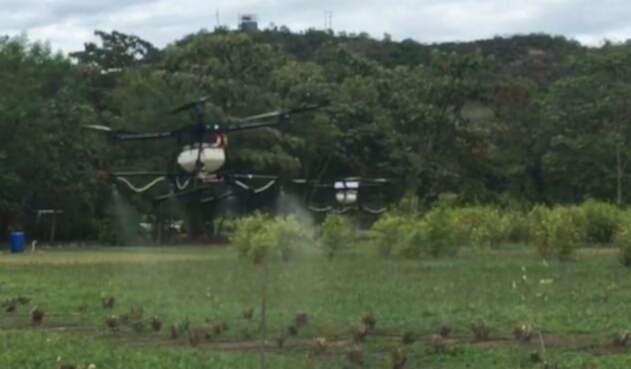 El Ministerio de Defensa planea utilizar drones para erradicar cultivos ilegales.