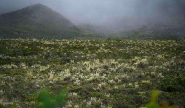 El Páramo de Sumapaz, en Cundinamarca