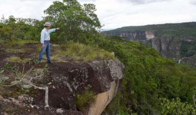 Santos señalando una zona de cultivos ilícitos