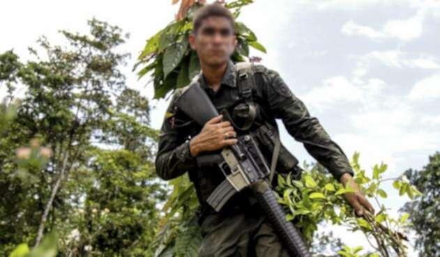 La Policía continua su lucha contra el narcotráfico, liderando la erradicación de cultivos de coca