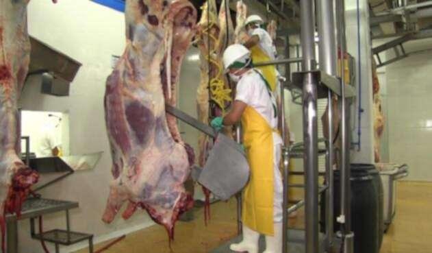 Tratamiento de la carne