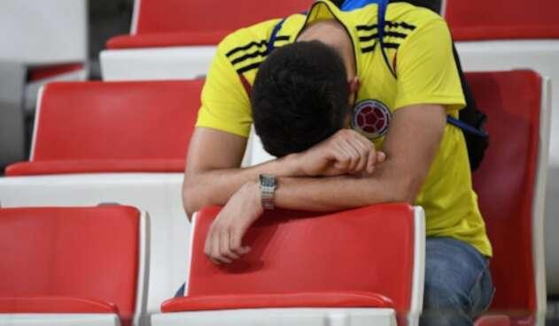 Un hincha de la Selección Colombia