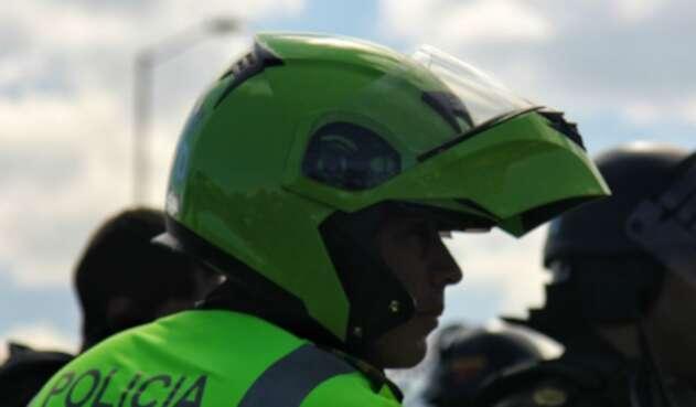 Policía Nacional, a salvaguardar la vida de los animales