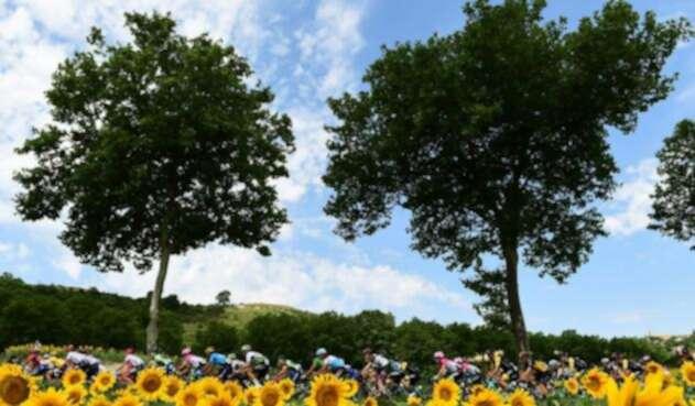 Los ciclistas en el Tour de Francia