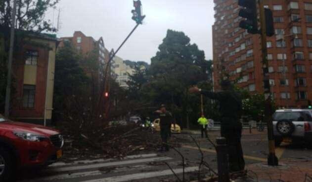 Árbol caído en Bogotá