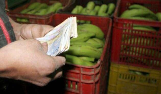 Un tendero contando sus ganancias en el mercado