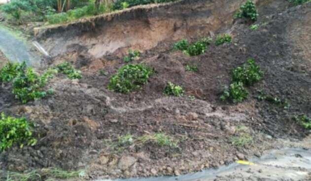 Las lluvias generan derrumbes en Risaralda