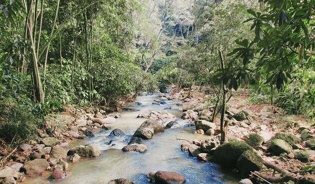 Parque Natural el Gallineral