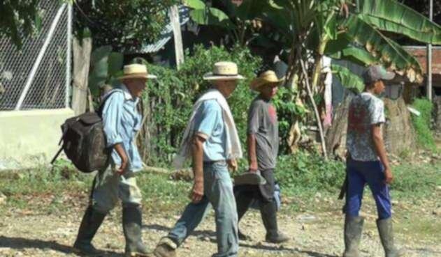 Según la Alcaldía de Medellín, este año se han atendido cerca de 1.400 hogares que se han desplazado a la ciudad.
