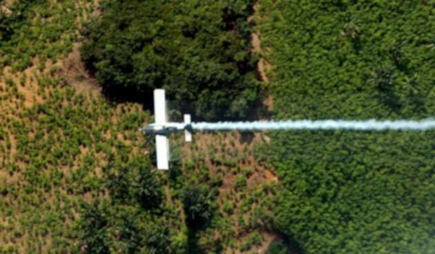 Fumigación aérea de cultivos ilícitos en Tumaco (Nariño)