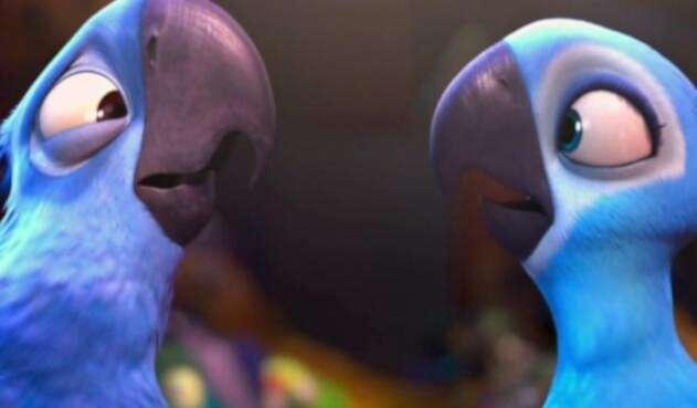 Guacamayos azules en la película Río