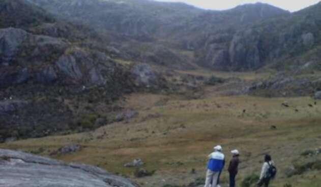 La delimitación actual protege 98 mil hectáreas del ecosistema.