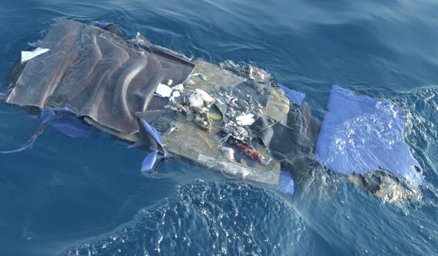 Los 189 ocupantes del avión murieron en el impacto.