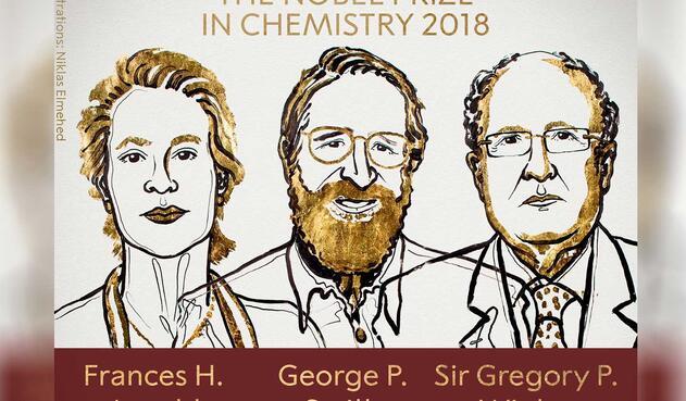 Nobel Química para Arnold, Smith y Winter