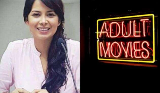 La diputada Ángela Hernández lanzó fuertes críticas a la industria de la pornografía.