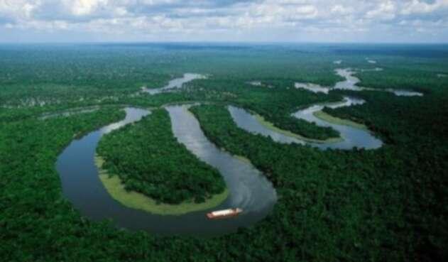 Se han lanzado varios SOS por la protección de la Amazonía.