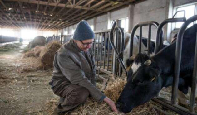 Los agricultores alemanes son los más afectados por el cambio climático en territorio germano.