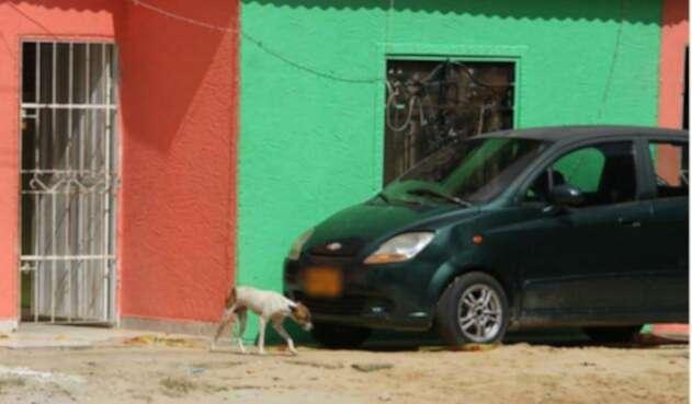 Ladrón que iba a robar un carro se quedó dormido