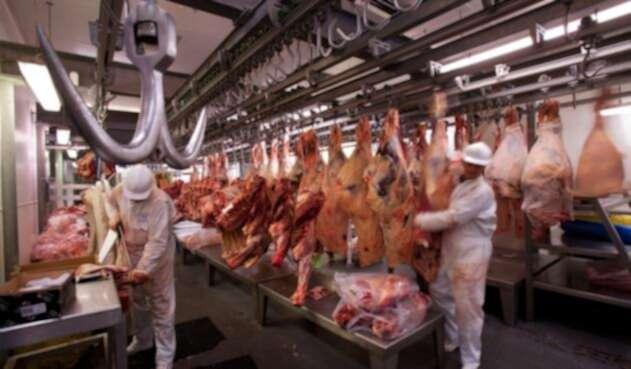 Producción excesiva de carne