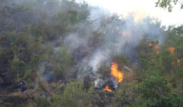 Incendio Capa Vegetal