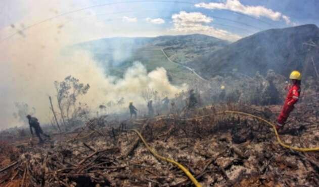 Incendio forestal. Imagen de referencia.
