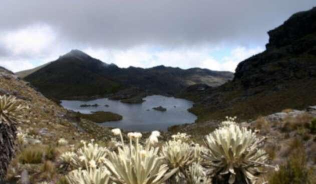 Los gobernadores pretenden establecer un acuerdo que llevará a la protección de los ecosistemas.