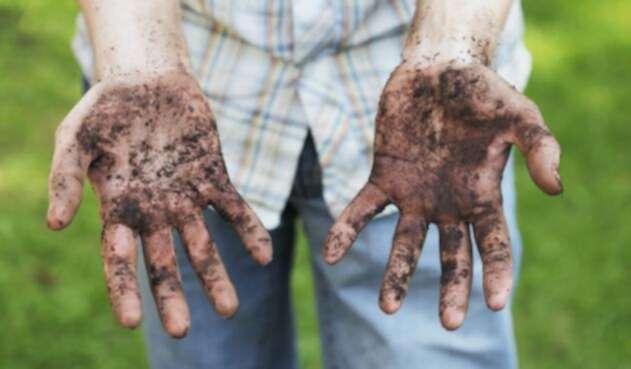 Científicos señalaron que come tierra ayuda para adelgazar.