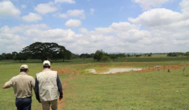 Los despojos de tierras ocurrieron en la mayorìa de municipios del alto sinù.