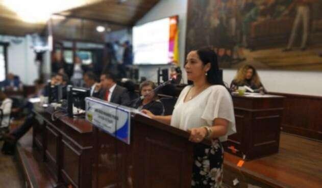 Concejal del Polo democrático Xinia Navarro