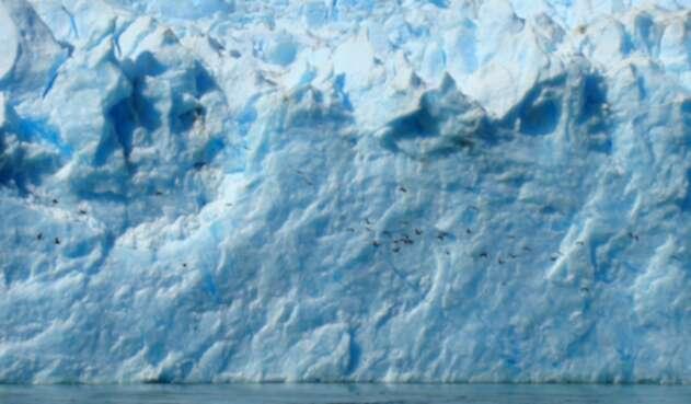 El cambio climático ha terminado este patrimonio ambiental.