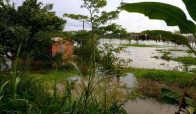 Por el desbordamiento del río Chigorodó, varias familias perdieron sus cultivos y enseres.