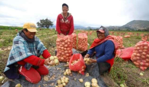 Boyacá, Paisaje Agricultura Familiar
