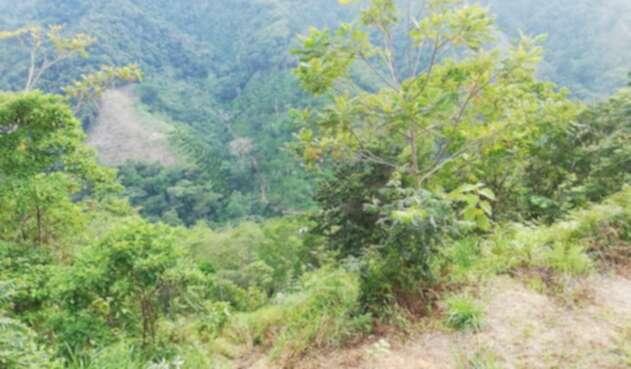 Sector Guayabito, donde fue encontrado el cuerpo de la mujer.