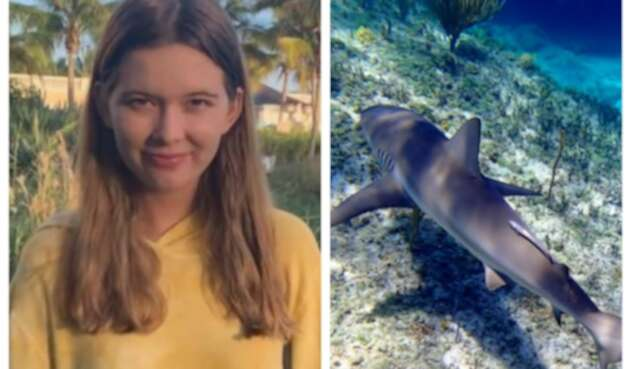 Jordan Lindsay atacada por tiburones