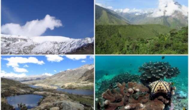 Parques Nacionales Naturales