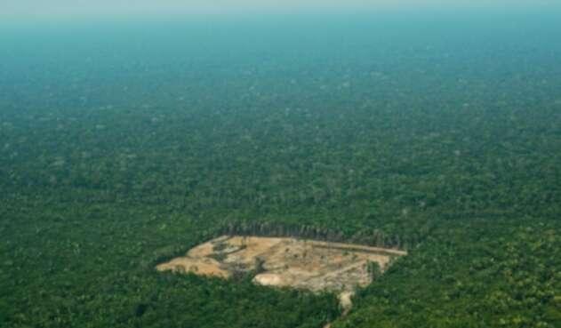 Deforestación en la Amazonía brasileña