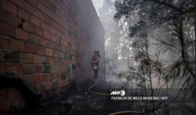 Incendio portugal bomberos