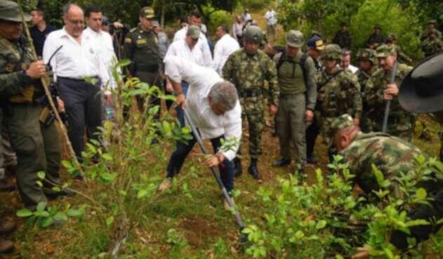 Duque erradicando cultivos ilícitos