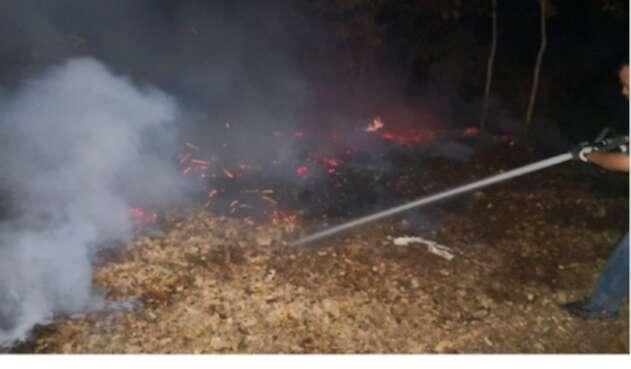Siete indencios forestales fueron apagados en Cundinamarca