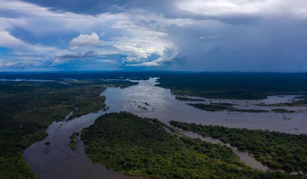 La selva amazónica es el pulmón ambiental del mundo.