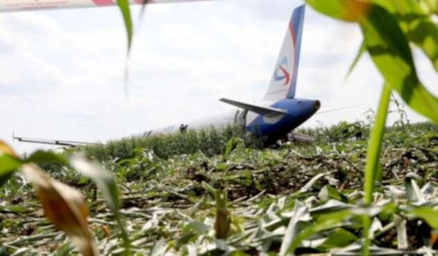 Avión de Ural Airlines después de aterrizaje forzoso en un campo de maíz