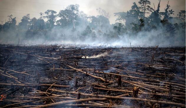 Incendio en la Amazonia, que comparten varios países.