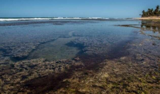 Playa Brasil con petroleo