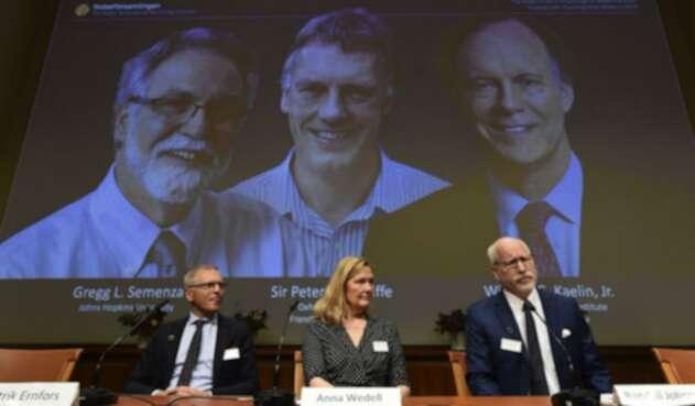 Ganadores del Nobel de Medicina 2019