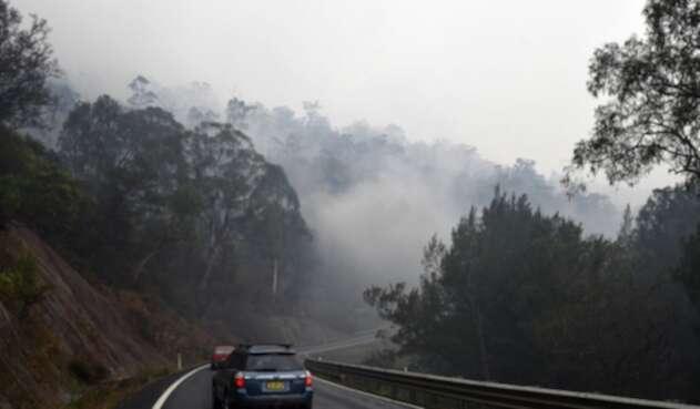 El incendio en Australia ha matado miles de animales.